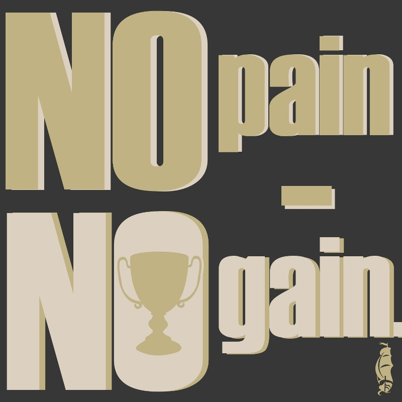 no pain no gain s