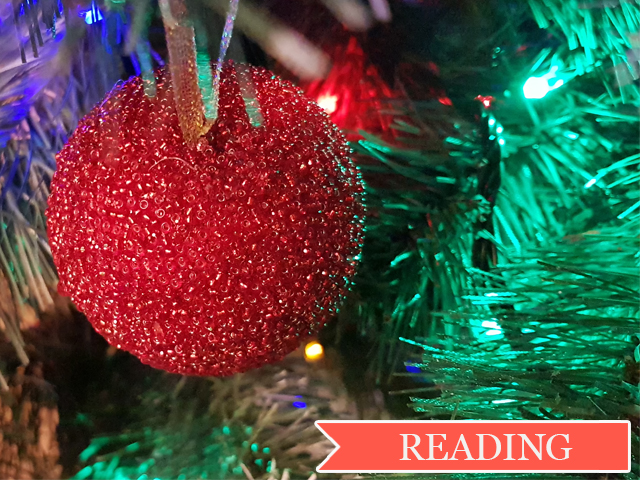 Читаем на английском: Christmas Day in the Morning